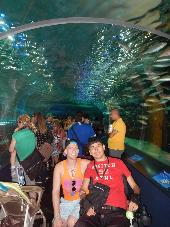 Top Wheelchair Accessible Attractions For A Week In Toronto - 6 amazing underwater attractions